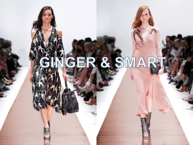 ginger&smart2